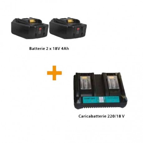 Kit batterie per forbice elettrica Jolly F301